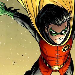 Robin (13).jpg