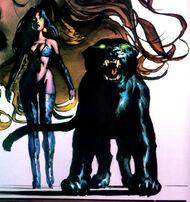 Panther (2)