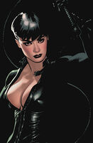 86799-156926-catwoman