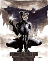 1202463-catwoman by anjum