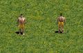VillagerAOEin-game