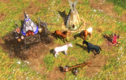 Aoe 3 horse
