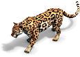 Jaguar prev aoe2de.png