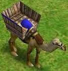 Egyptian camel trade car