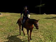 General Custer model