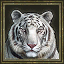 White Tiger (Age of Empires III)