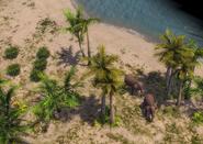 Ceylon terrain