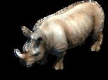 Rhino prev aoe2de.png