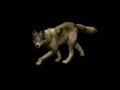 Wolf render Aoe2
