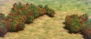Journey terrain3 aoe2de