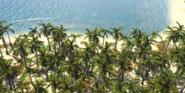 RM AoE3 Caribbean 3