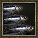 Sardines Icon.png