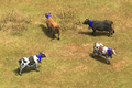 AoE2 DE cows