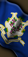 Federal state US connecticut.png
