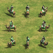 Imperial Camel Rider Group