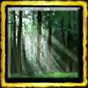 Forest Spirit Ceremony