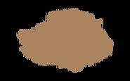 Magyars
