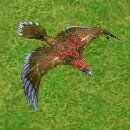 Stymphalianbirdplayer2