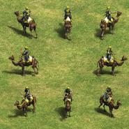 Camel Archer Group