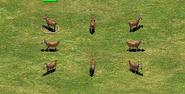 Goats AoEII