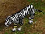 White Tiger (Age of Mythology)