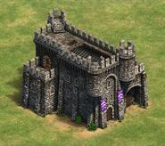 Fortress AOE2DE