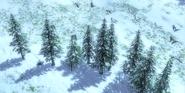 RM AoE3 Siberia 1