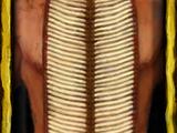 Bonepipe Armor