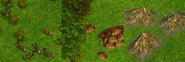 Age of Empires resources