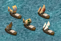 TransportShipDLC