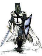 Teutonic Knight real life