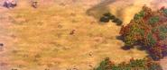 Aral terrain5