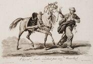 Arabian-horse-&-Mameluke