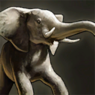 Riderless Elephant portrait aoe3de