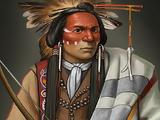Cree Tracker