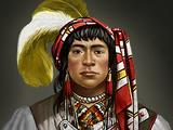 Seminole Sharktooth Bowman