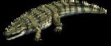 Crocodile aoe2de.png
