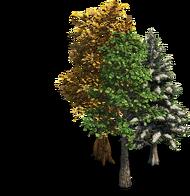 Trees aoe2de.png