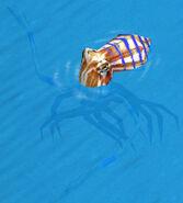 Krakenn