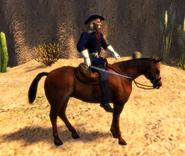 Custer side model