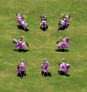 GrupoPaladines