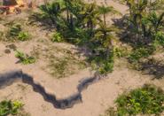 Ceylon terrain 1