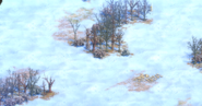 Ant terrain2 aoe2de