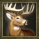 Aoe3 beta deer portrait