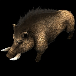 Iron Boar