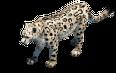 Snowleopard prev aoe2de.png