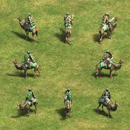 Heavy Camel Rider Group