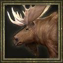 Aoe3 beta moose icon portrait