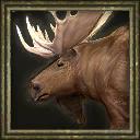 Aoe3 beta moose icon portrait.png