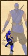 Shinobi history portrait